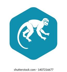Capuchin monkey icon. Simple illustration of capuchin monkey vector icon for web