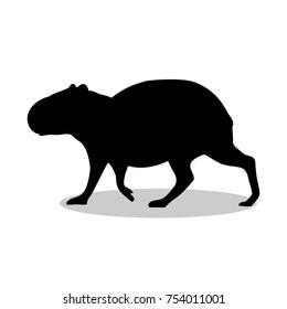 Capybara rodent mammal black silhouette animal. Vector Illustrator.