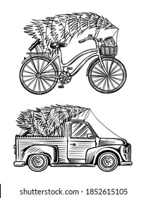 Car and Bicycle with a Christmas tree. Spruce in the luggage of the truck. Delivery concept. Vector illustration for label, badge, logo, postcard or banner. Hand drawn Vintage engraved sketch.