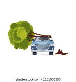 Car damaged by fallen tree. Blue automobile with broken windshield. Flat vector element for advertising banner of insurance service