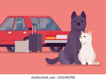 Car travel, road trip with pet cat and dog. Cute puppy and kitten fear auto riding, owners moving on vacation, leaving lonely pets behind or in boarding kennel. Vector flat style cartoon illustration