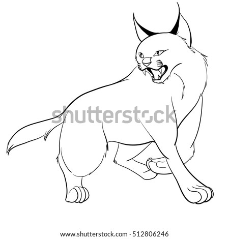 Caracal Cat Outline