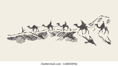Caravan of camels in desert, hand drawn vector illustration, sketch