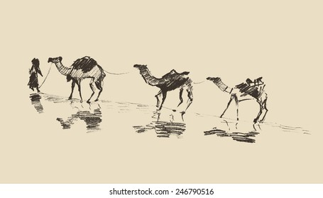 Caravan with camels in desert, hand drawn vector illustration, sketch