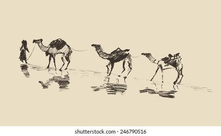 Caravan with camels in desert, hand drawn vector illustration, sketch