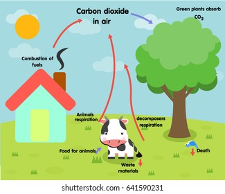 Carbon cycle images stock photos vectors shutterstock the carbon cycle ccuart Choice Image