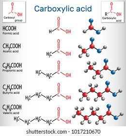 Carboxylic acids (formic, acetic, propionic, butyric, valeric). Homologous series of straight-chain, saturated carboxylic acids. Structural chemical formula and molecule model. Vector illustration
