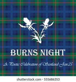 The card Burns Night on tartan background with white thistle. Vector illustration.