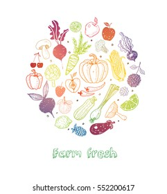 Card with colored Doodle fruits and vegetables on white background. Vector sketch illustration of healthy food.