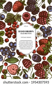 Card design with colored strawberry, blueberry, red currant, raspberry, blackberry