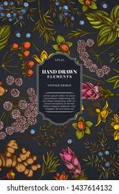 Card design on dark background with angelica, basil, juniper, hypericum, rosemary, turmeric
