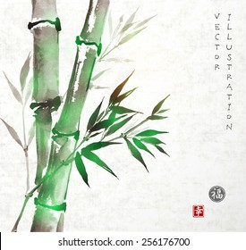 """Card with green bamboo in sumi-e style. Hand-drawn with ink. Vector illustration. Traditional Japanese painting. Sealed with hieroglyphs """"luck' and """"happiness"""""""