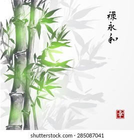 """Card with green bamboo in sumi-e style. Hand-drawn with ink. Vector illustration. Traditional Japanese painting. Contains hieroglyphs """"happiness"""" (stamp), """"well-being"""", """"eternity"""", """"harmony"""""""