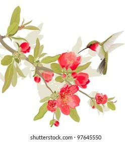 Card with sakura blossom and colibri
