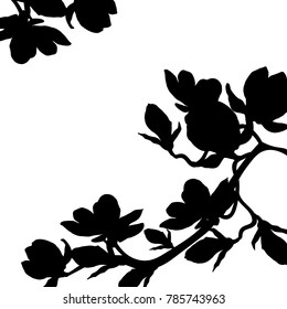 card silhouette branch magnolia flower blossom  vector illustration