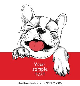 Card template with portrait of a cheerful dog. Vector illustration.