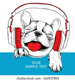 Card template with portrait of a cheerful French bulldog wearing a headphones. Vector illustration.
