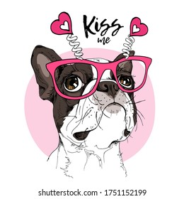 Card of a Valentine's Day. Portrait of the dreaming funny Boston Terrier dog in the pink glasses with hearts. Humor card, t-shirt composition, hand drawn style print. Vector illustration.