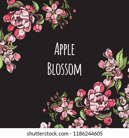 Card vector illustration with apple blossom.