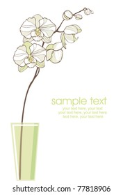 card with vector stylized white orchid in vase