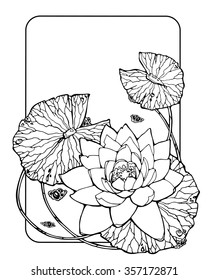 card with water lily, lotus, feng shui symbol