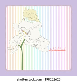 Card with white orchid on a light  stripe background in a rounded rectangle.