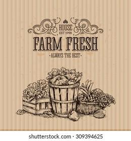 Cardboard organic food design template. Healthy eating background. Vector illustration