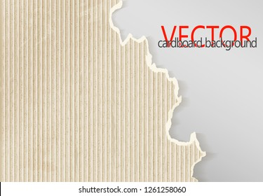 Cardboard sheet with a torn edge as an industrial abstract background. Vector.