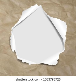 Cardboard Texture Background With Torn With Gradient Mesh, Vector Illustration