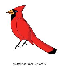 Cardinal Bird Cartoon Images Stock Photos Vectors Shutterstock