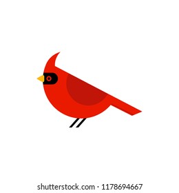 Cardinal bird cartoon icon