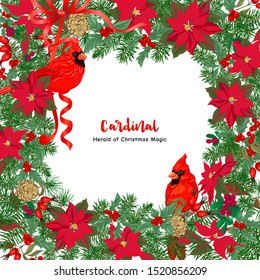 Cardinal bird and Christmas wreath of spruce, pine, poinsettia, dog rose, mistletoe, fir. Template for card, banner, gift voucher, label. Colored vector illustration.