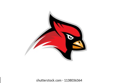 Cardinal Bird Logo Symbol vector Design Illustration