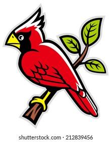 cardinal bird on a tree branch