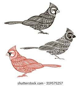 Cardinal. Set of  birds  isolated on white background. Hand drawn vector illustration, sketch. Doodle elements for design.