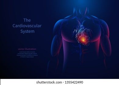 The cardiovascular system. Vector isolated heart with pain center. Low poly wireframe. Polygonal 3D human body and organ on dark background. Medicine concept with geometry triangle.