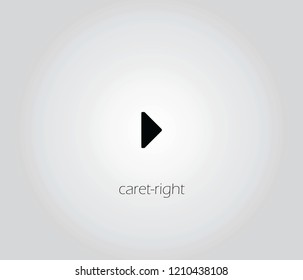 caret-right  icon vector