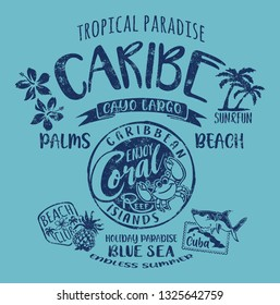 Caribe Cuba coral reef tropical paradise cute vector artwork for children wear grunge effect in separate layer