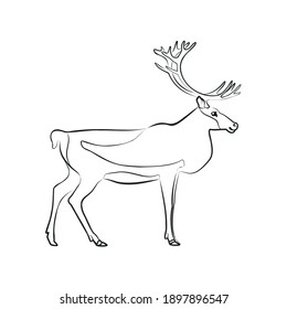 Caribou. Outlined silhouette illustration of a caribou isolated on a white background. Vector 10 EPS.