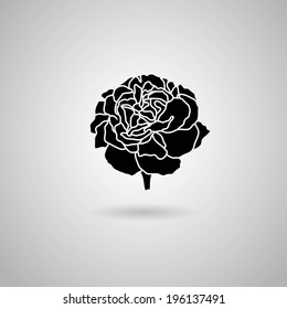 carnation flower. Vector illustration.