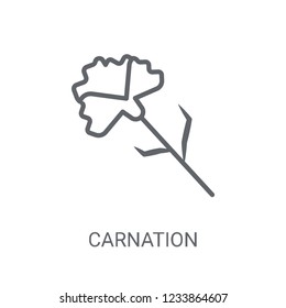 Carnation icon. Trendy Carnation logo concept on white background from Nature collection. Suitable for use on web apps, mobile apps and print media.