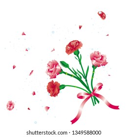 Carnation/Bouquet of carnation/ Carnation flower petals/Mother's Day