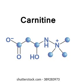 Carnitine is an amino acid derivative and nutrient involved in lipid (fat) metabolism in mammals and other eukaryotes.