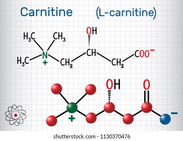 Carnitine (L-carnitine) molecule. Structural chemical formula and molecule model. Sheet of paper in a cage. Vector illustration