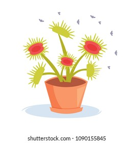 Carnivorous plant. Insects. Sundew Vector. Cartoon. Isolated art on white background. Flat