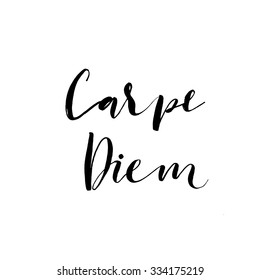 Carpe diem card. Hand drawn lettering. Vector calligraphy art. Inspirational latin phrase. Ink illustration. Isolated on white background. Capture the moment.