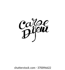 Carpe diem - latin phrase means Capture the moment. Inspirational quote expressive handwritten with brush, isolated on white background. Vector calligraphy art.