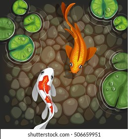 carps koi fish underwater pond vector illustration