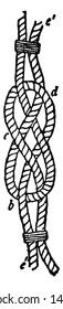 Carrick Bend is a knot used for joining two lines and is particularly appropriate for very heavy rope or cable, vintage line drawing or engraving illustration.
