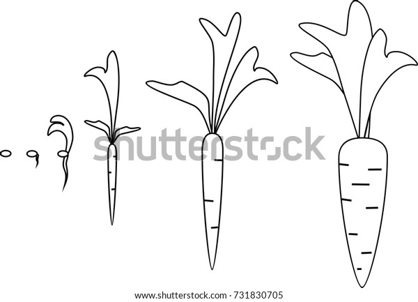 √ Soil Coloring Pages | Rocks And Soil Coloring Pages | 433x600